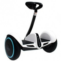 "SEGWAY 10"" color WHITE"