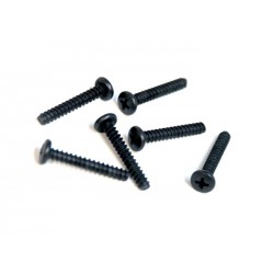 81220-17 - CHS screw 4x25 mm x6 unidades