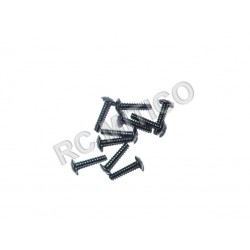 60080 - Cap Head Self-tapping Screw 3x14 - 10 uds.