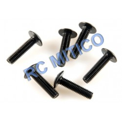 09139 - Cap Head Screws M3x12 mm 6 Uds.