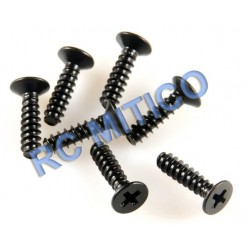 09143 - Flat Head Screw 2.5x10 mm - 12 Uds.