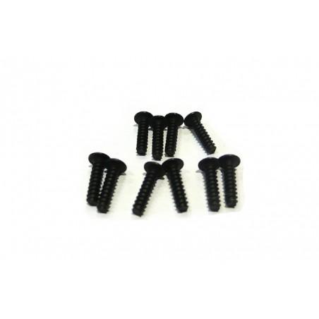 6076 - Screw M3x12 mm x10 pcs