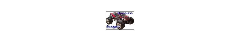 Repuestos Monster Savagery 1/8  Brushless