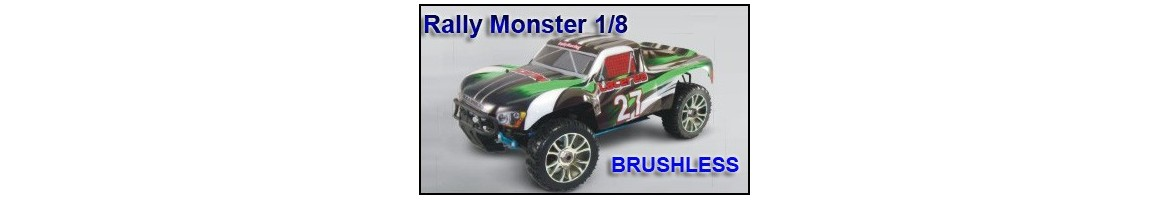 Repuestos Rally Monster 1/8  Brushless