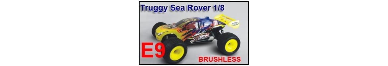 Repuestos Truggy Sea Rover E9 1/8 BRUSHLESS